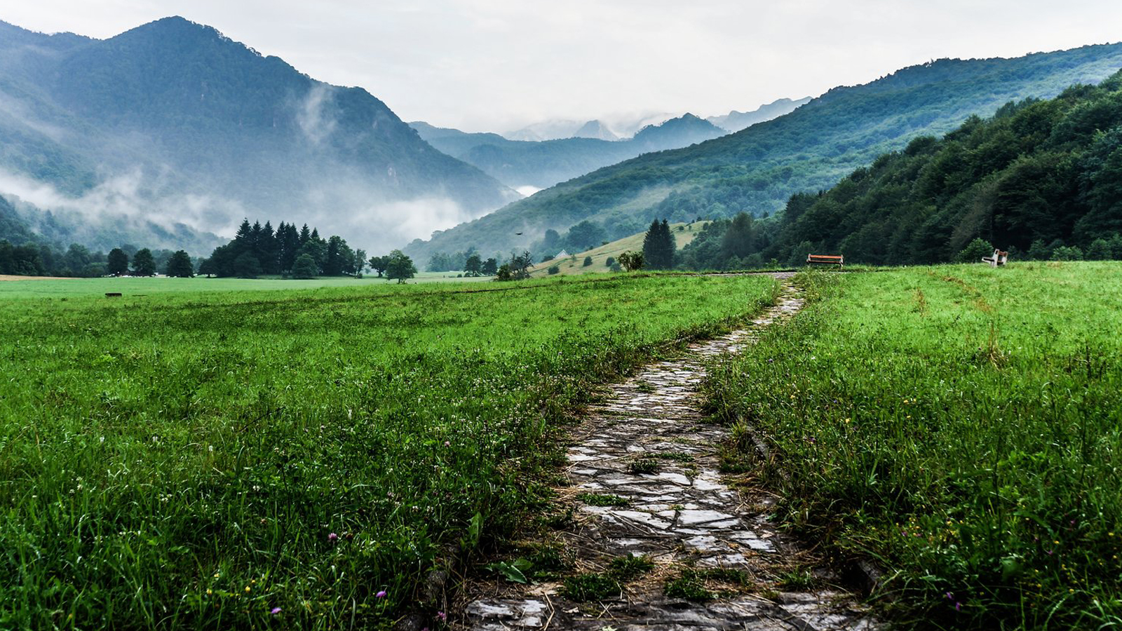 Flowing mountains | Breintraining, mindfulness en Zen